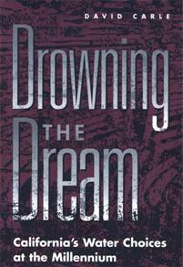 Cover image for Drowning the Dream