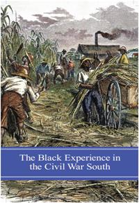 The Black Experience in the Civil War South cover image