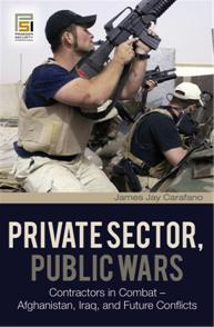 Private Sector, Public Wars cover image
