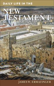Daily Life in the New Testament cover image