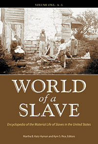 Cover image for World of a Slave