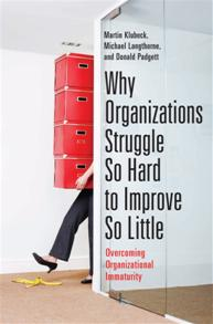 Why Organizations Struggle So Hard to Improve So Little cover image