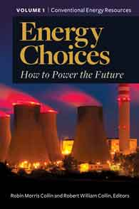 Cover image for Energy Choices