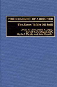 The Economics of a Disaster cover image