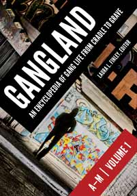 Cover image for Gangland