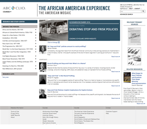 Cover image for The African American Experience